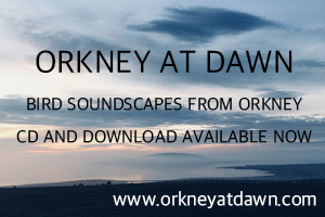Orkney at Dawn